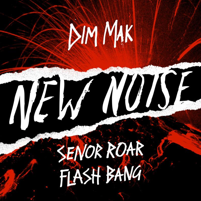 NewNoise.SenorRoar.FlashBang_800px